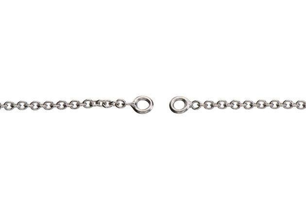 Picture for category Platinum Rolo Chain